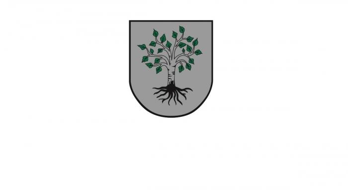 Gemeinde Birkfeld